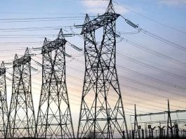 Around 1,000 power sector employees have succumbed to COVID-19